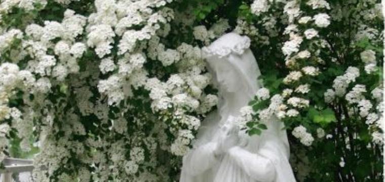May 2019 Mass